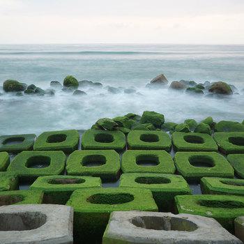 Bờ kè chắn sóng Xóm Rớ Phú Yên thiên đường rêu xanh