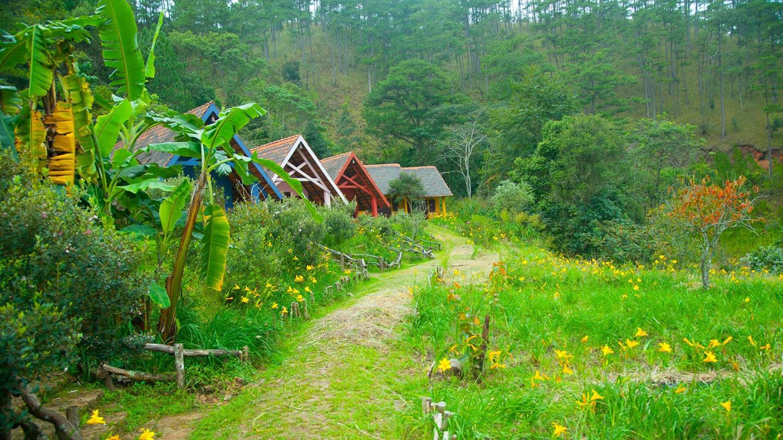 Mê mẩn với ba ngôi làng đẹp nhất đà lạt