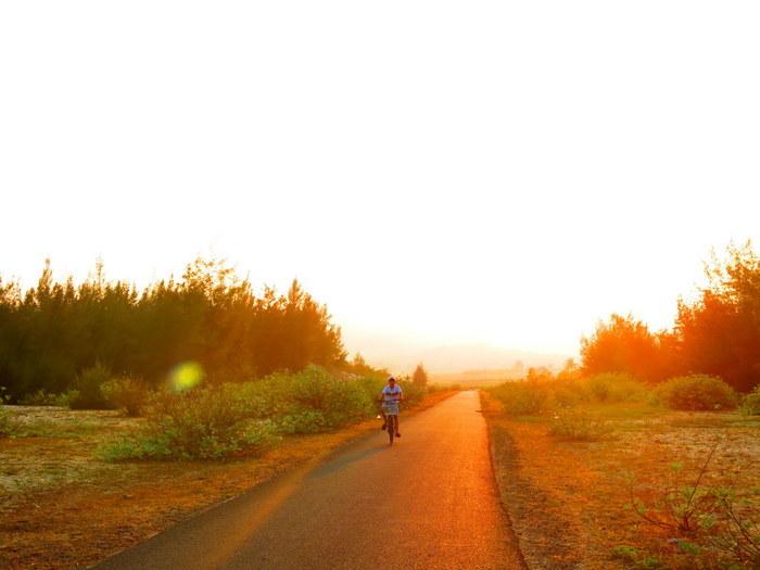"""Hướng dẫn đường đi đến Bãi Xép Phú Yên, một trong cảnh phim""""Tôi thấy hoa vàng trên cỏ xanh""""nhé."""