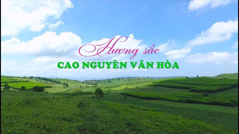 Cao Nguyên Vân Hoà